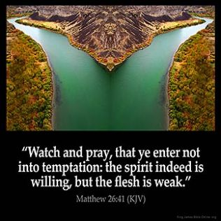 Matthew_26-41-1: Watch and pray, that ye enter not into temptation: the spirit indeed is willing, but the flesh is weak
