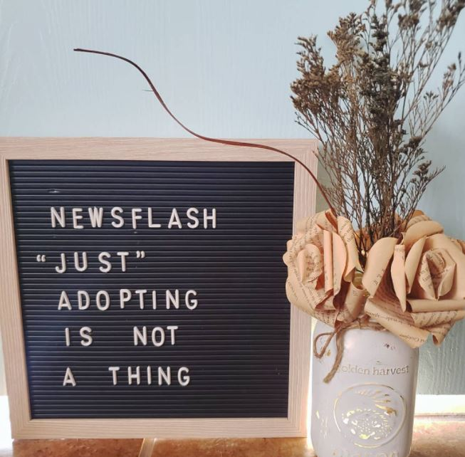 """Just"" Adopting Is Not A Thing"