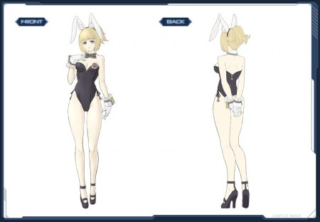 Bunny Suit Art