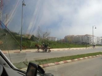 marocco2015_020