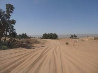 marocco2015_144