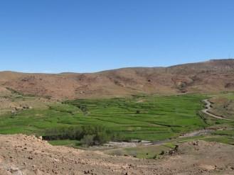 marocco2015_154
