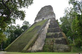 Temple V - die Rückseite ist noch völlig überwachsen