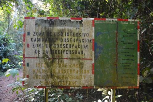 Die ehemalige Straße durch den Urwald dient heute als Wanderweg