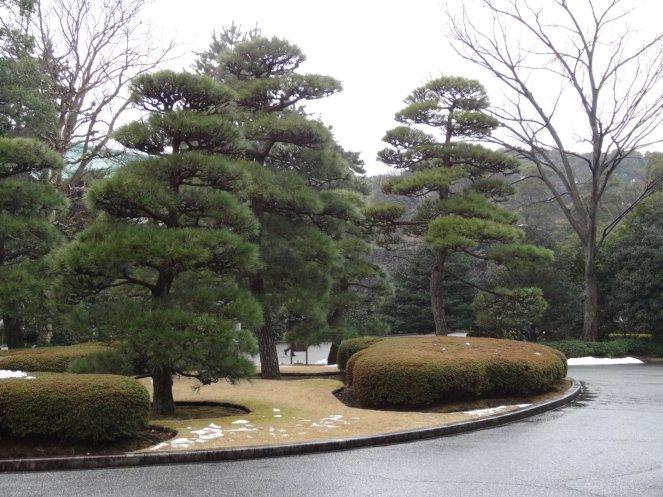 Japanisch-akkurater Garten