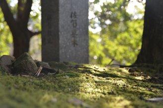 Japan_1_100