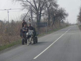 Genau so stellt man sich Serbien vor! Genau so! Herrlich.