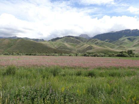 Kirgistan_147