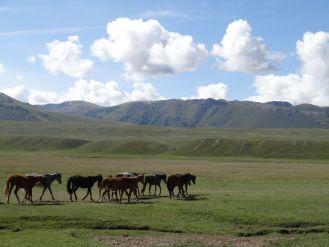 Kirgistan_164