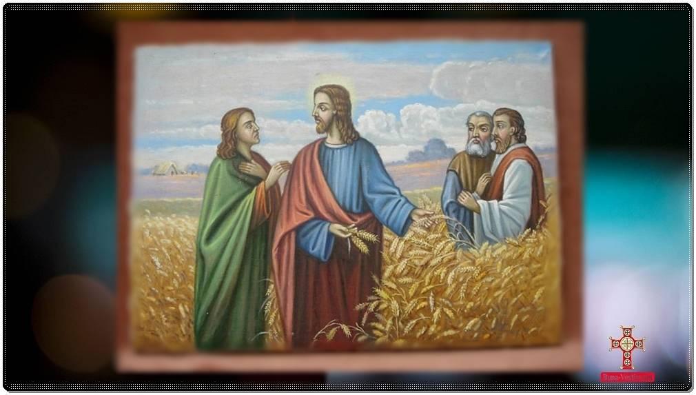 Duminica a III-a după Pogorârea Sfântului Duh- Sf Ioan Gura de Aur