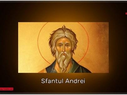 Predică la pomenirea Sfântului Apostol  Andrei
