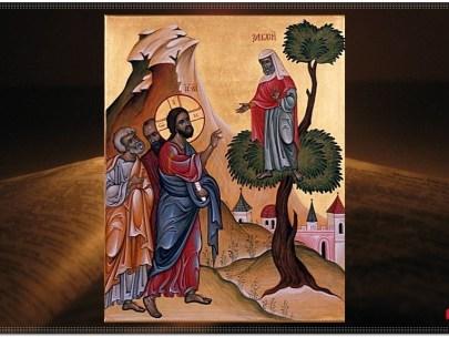 Predică la Duminica a 32-a după  Rusalii