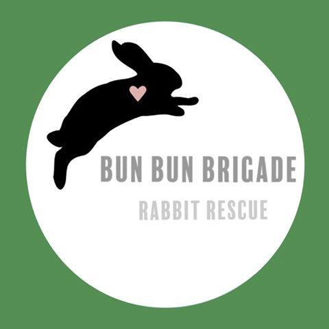 Bun Bun Brigade Rabbit Rescue