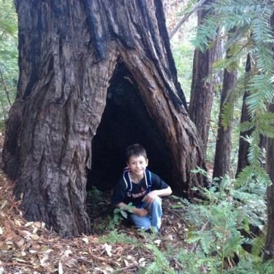 Mill Creek Redwood Preserve