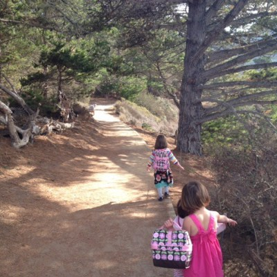 Point Lobos Bird Rock trail hike attempt
