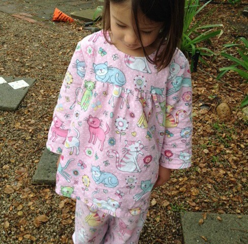 Glitter kitty flannel pajamas