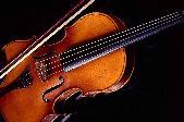 169_Violin