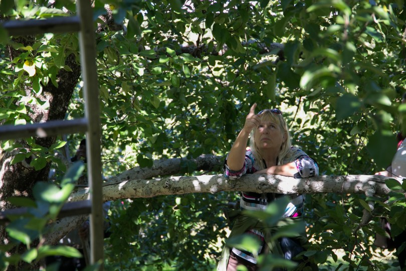 A visitor of the orchard points out a few remainig apples on the tree. Photo by Silvia Mazzocchin/BU News Service