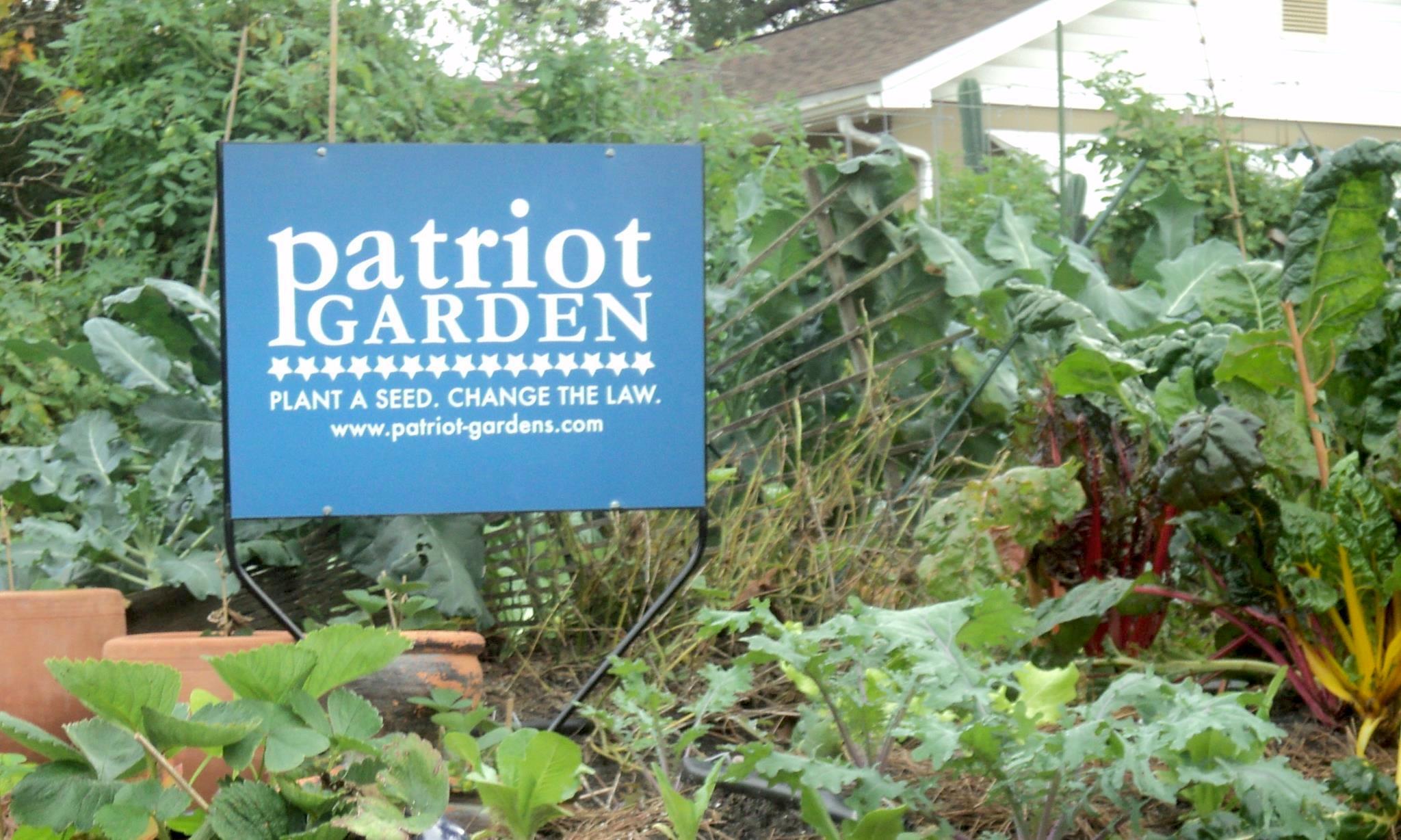 proposal orlando updates landscape and front yard vegetable