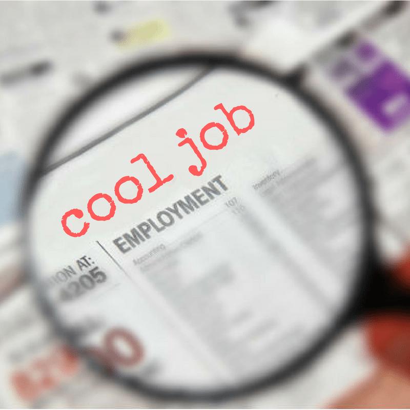 Employment job alert