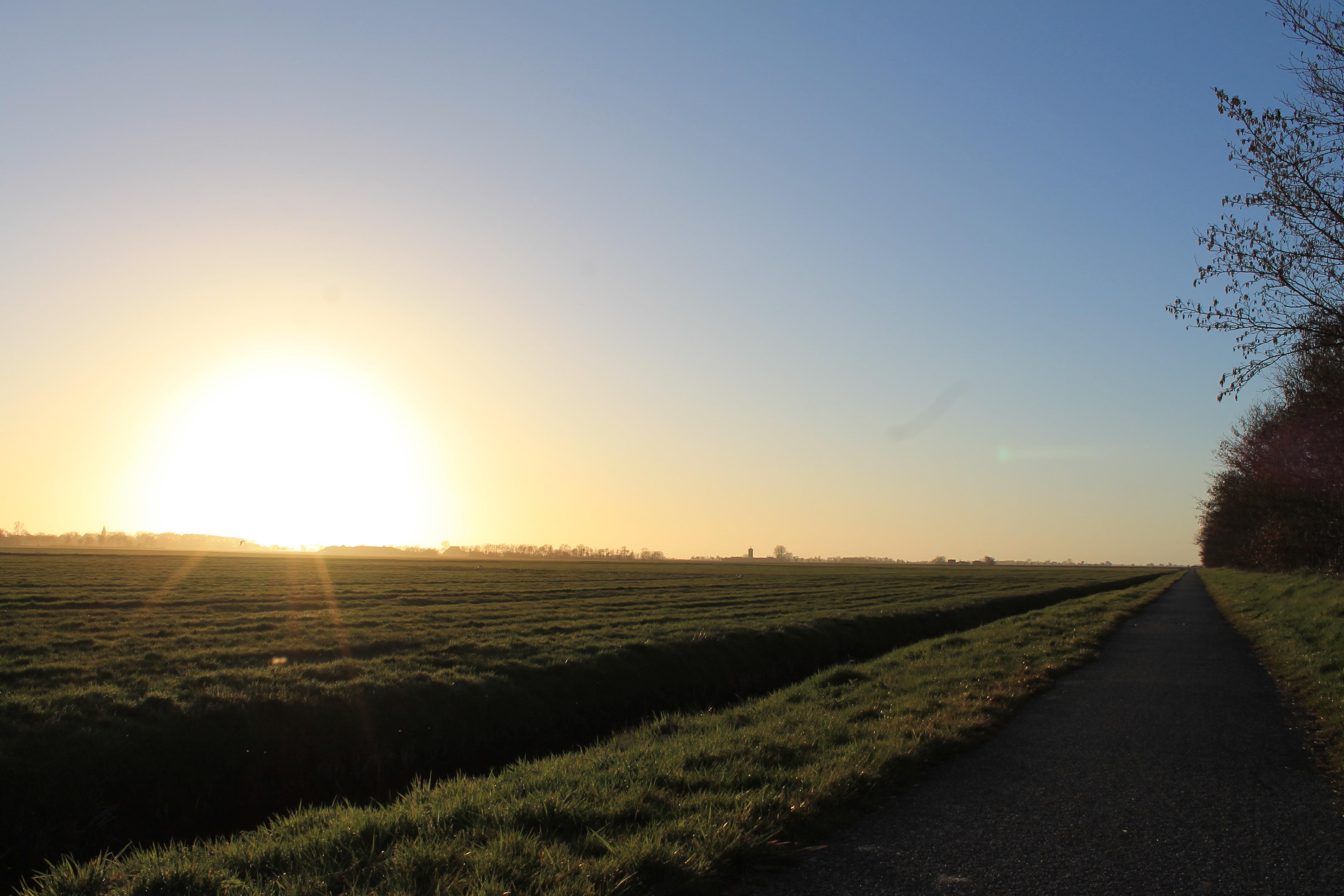 Het weiland naast bungalowpark Markant met ondergaande zon.