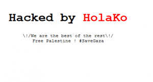 Holako screenshot for a hacked website