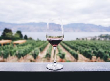 production-wine-colombia-wine-glass
