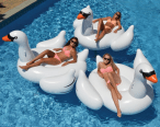 bimbos-on-inflatable-geese-5