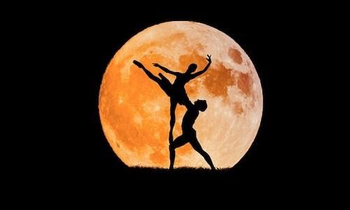 村主章枝の社交ダンス大会結果のまとめ!金スマで全日本選手権の決勝へ!