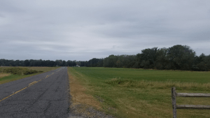 colts neck homes for sale farm road