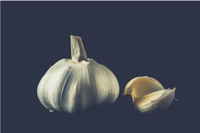 pixabay garlic
