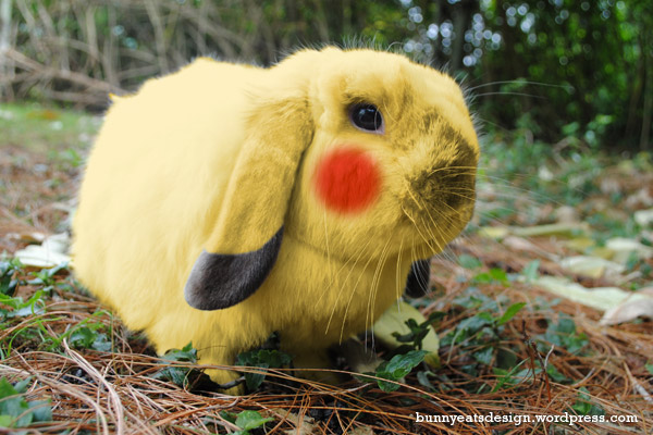 Rabbit Pikachu