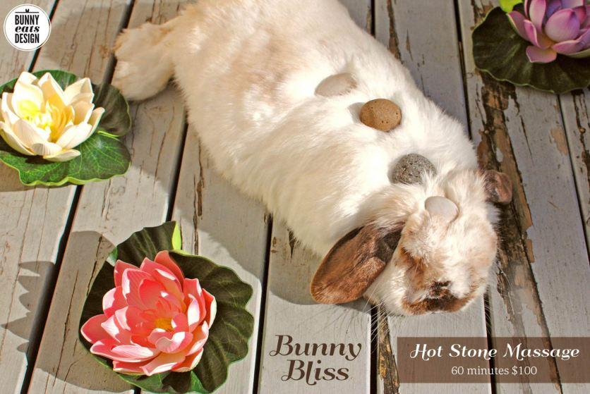 tofu-bunny-bliss5
