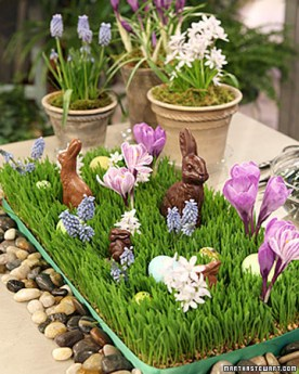 chocolate-easter-bunnies4