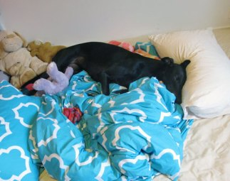 The scrunchy quilt and the Princess.