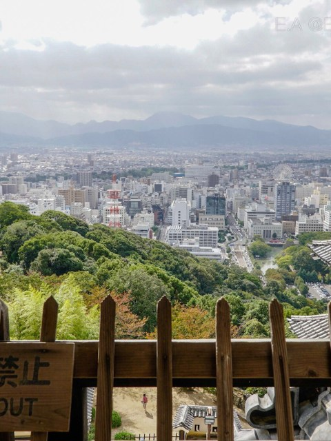 Off the beaten path: EHIME, JAPAN.
