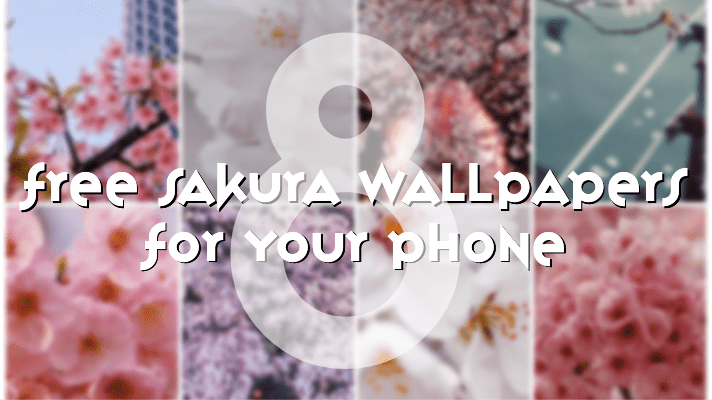Eight Free Sakura Wallpapers for your phone!