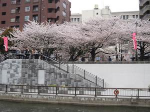 隅田川公園2