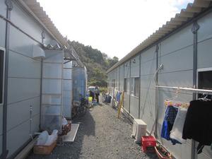 小渕浜の仮設住宅2