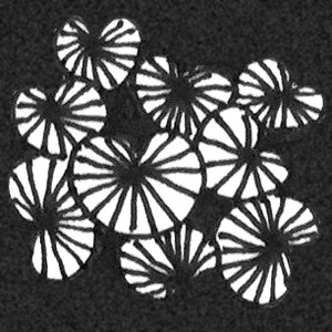 Zentangle Muster Lilypads