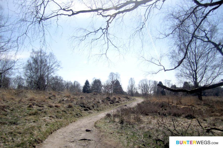 Zwischen Poppenbüttel und Kayhude auf dem Alsterwanderweg
