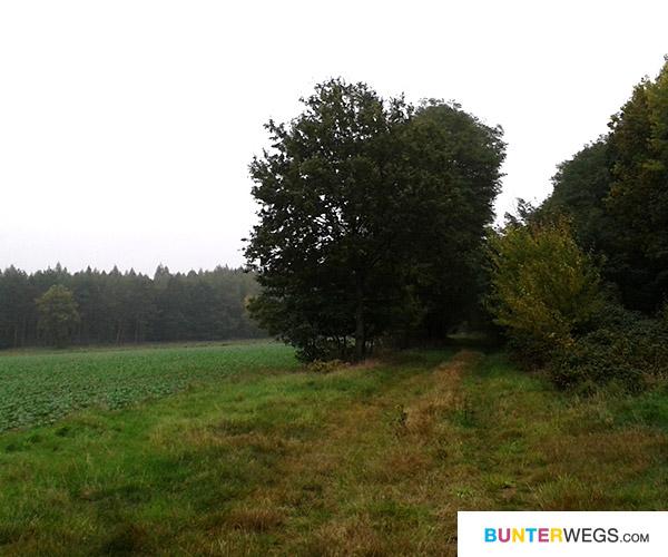 Von Winterfeld nach Meßdorf * BUNTERwegs.com