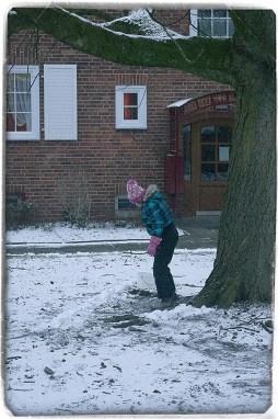 A Tiny Bit Of Snow 7