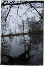 At The Pond3