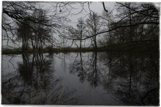 At The Pond5