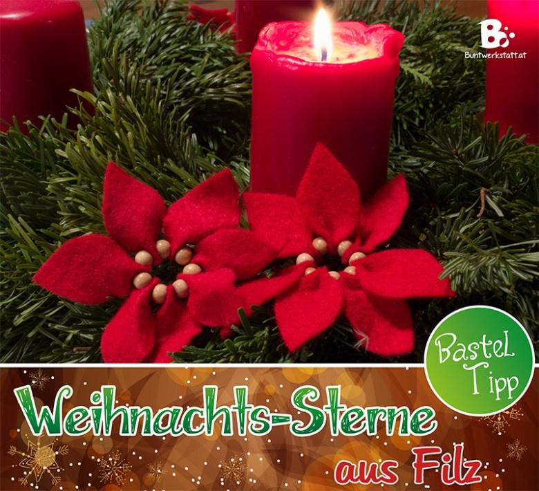 Weihnachtsstern aus Filz Anleitung