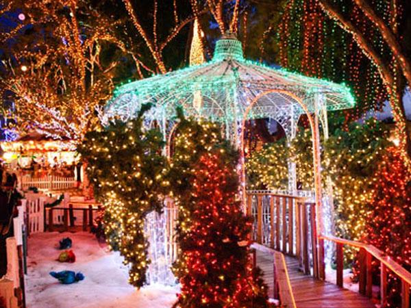 Natale A Natale.Natale A Miami Nella Foresta Incantata Di Babbo Natale Buongiorno Miami