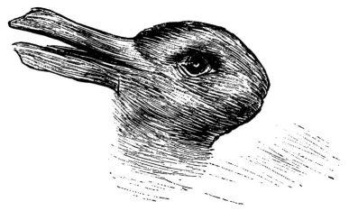 Test del coniglio anatra