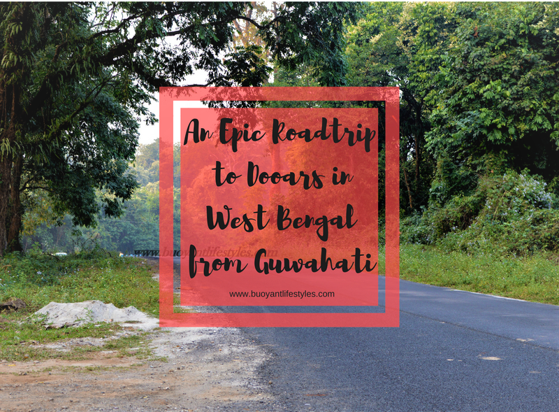 An Epic Roadtrip to Dooars in West Bengal from Guwahati