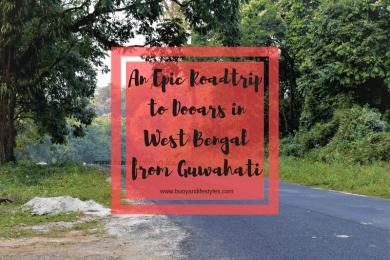 #dooars #westbengal #northbengal #roadtrip #weekendtrip #travelblogger